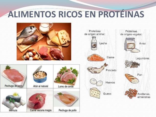 proteinas-en-los-alimentos-8-638